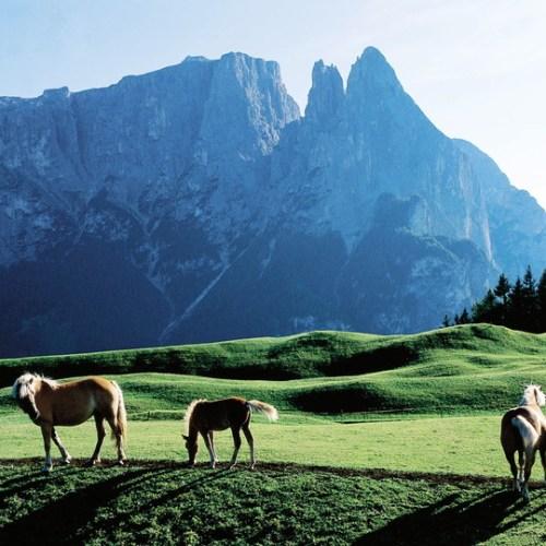 Bolzano, Trento voted Italy's best places to live