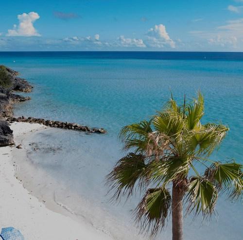 EU drops Aruba, Barbados and Bermuda from tax-haven blacklist
