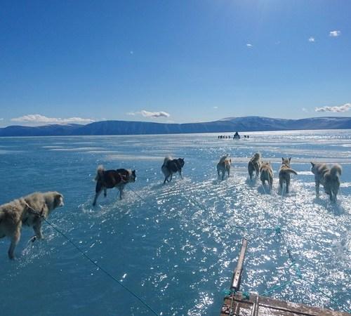 Photo Story: The Melting Sea of Ice