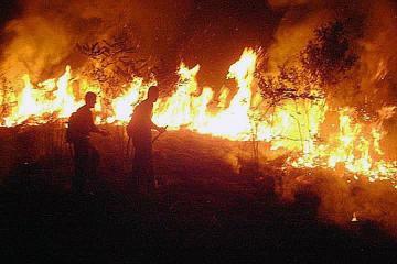 Fires in the Brazilian Amazon retreat in September