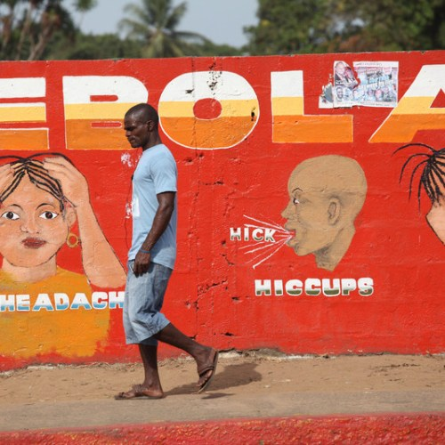 Security Council gravely concerned by Ebola outbreak in DR Congo