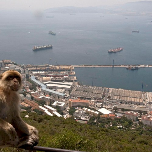 Gibraltar boosts port preparations in case of no deal Brexit
