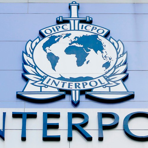 Interpol operation detects over 12 suspected foreign terrorist fighters crossing the Mediterranean