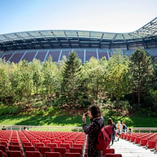 Swiss artist installs 300 trees in football stadium