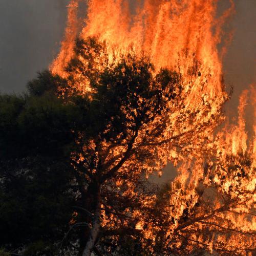 Rain helps control enormous wildfires in Lebanon