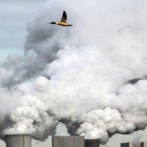 EU's carbon border tariff to target steel, cement, power
