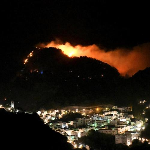 Photo Story: Forest fire in southern Spain