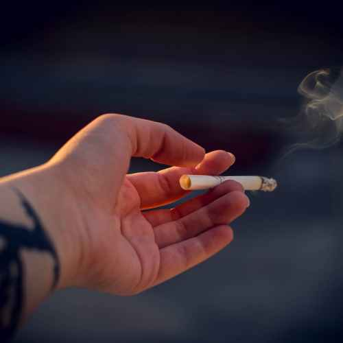 WHO reports that for the first time male smoking rates stalled