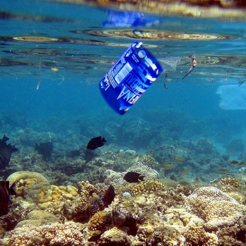 2020:theyear for action,to 'rise up' and safeguardocean life