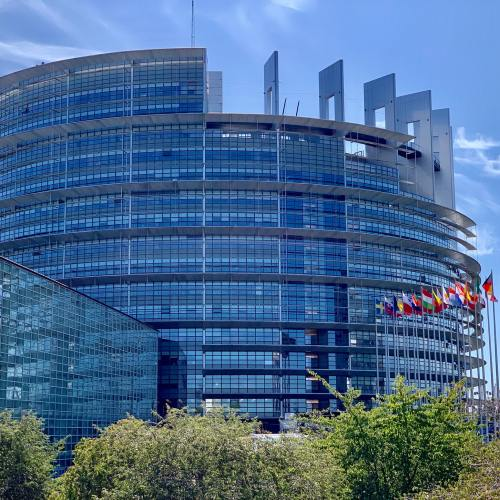 EU parliament votes to sue European Commission over rule-of-law inaction