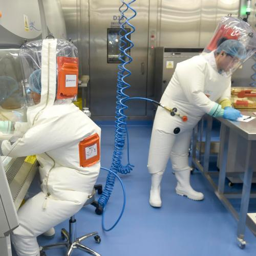 U.S. Republican report says coronavirus leaked from Chinese lab; scientists still probing origins