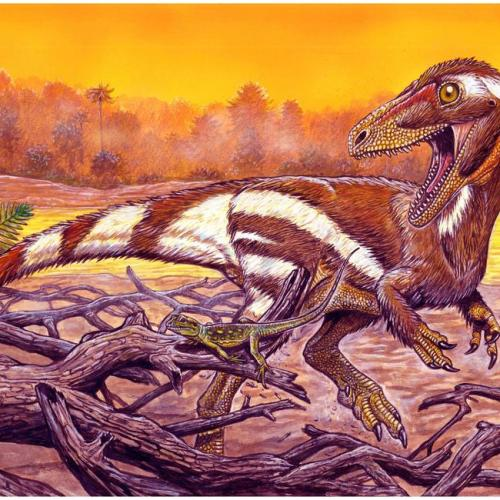 Fossil of unknown dinosaur species discovered in Brazil