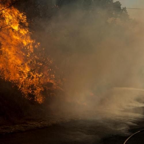Photo Story: Spain combats forest fires in Ourense