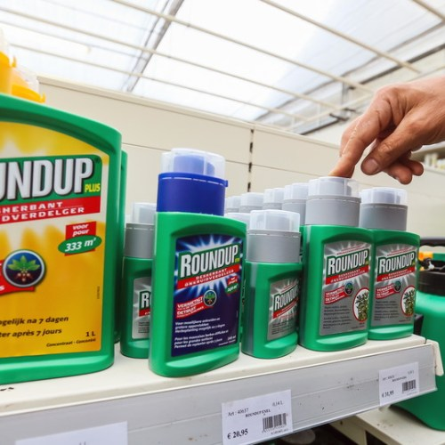 Mexico to phase out use of herbicide glyphosate