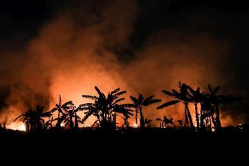 Protecting indigenous people key to saving Amazon, sayenvironmentalists