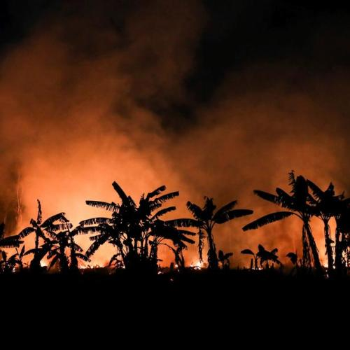 Fires in Brazil's Amazon rainforest surge