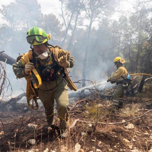 PhotoStory – Fighting Forest Fire