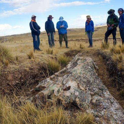 A fossil tree in Peru sheds light on the Andes landscape from 10 million years ago