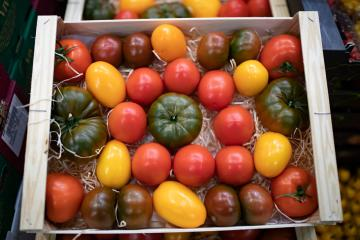 World food price index rises for 3rd month running in August -FAO