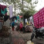 Outrage in India after another woman dies following gang rape