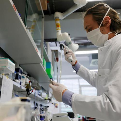 Australian firm says its nasal spray reduced coronavirus growth in animal study