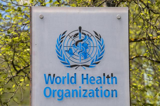 EU pushes for more transparency from WHO's members on pandemics