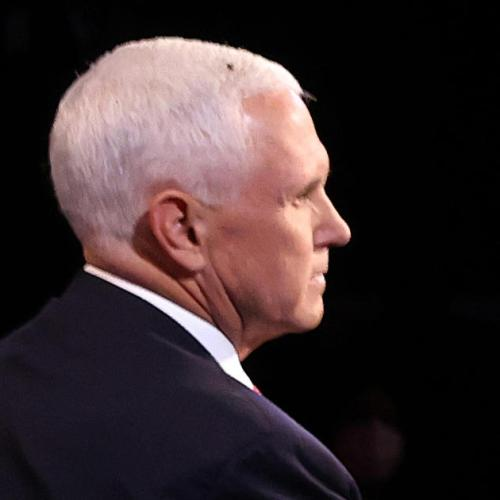 Errant housefly on Pence's head photobombs VP debate