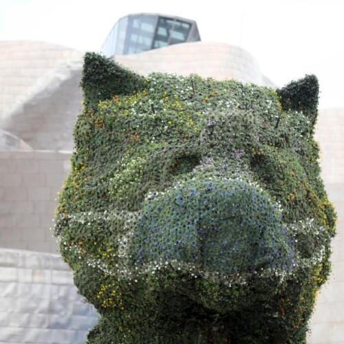 Photo Story: Facemask for Jeff Koons' Puppy at Guggenheim Bilbao