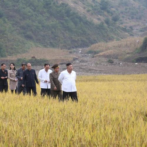 North Korea warns citizens against China 'yellow dust' carrying coronavirus