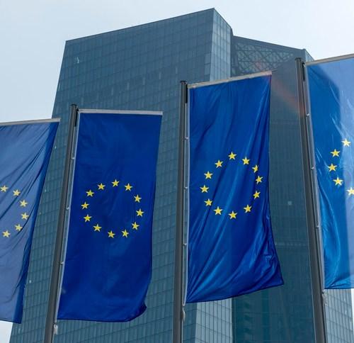 Europe's insurance deposit scheme still years away: ECB