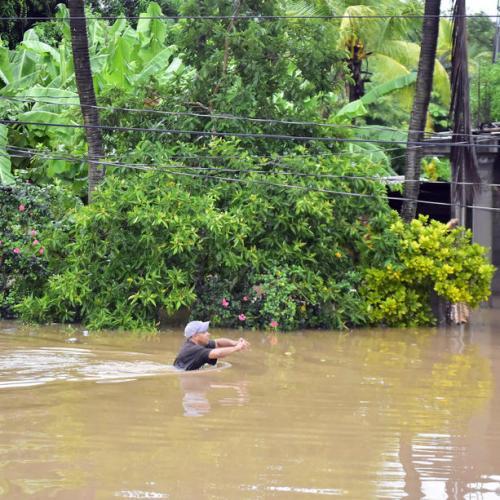 Coffee industry in Honduras hit badly due to Hurricane Eta