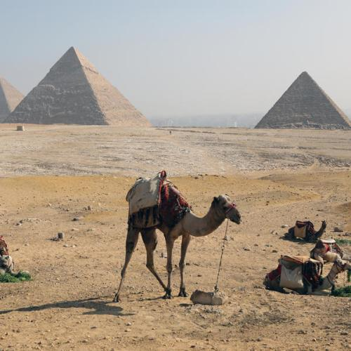 Egypt economy seen growing 2.9% in year to June, 5.0% in 2021/22