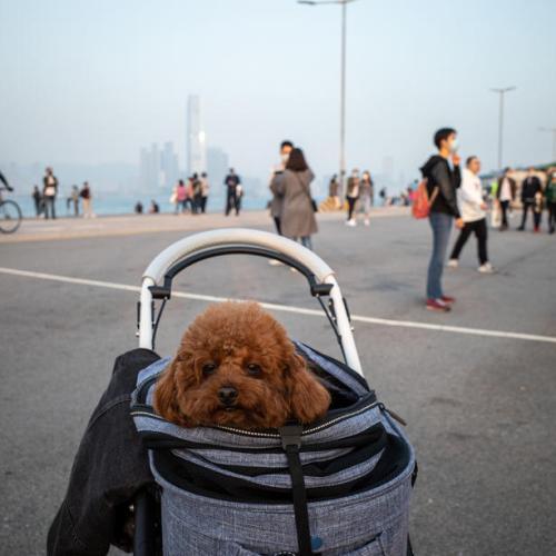 People visit Instagram Pier in Hong Kong