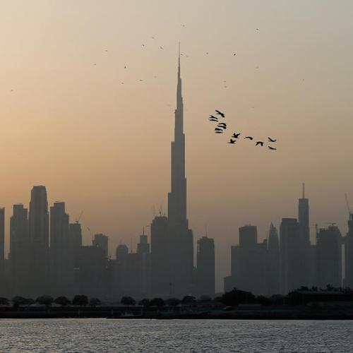 UAE adopts amendments to grant citizenship to investors and other professionals