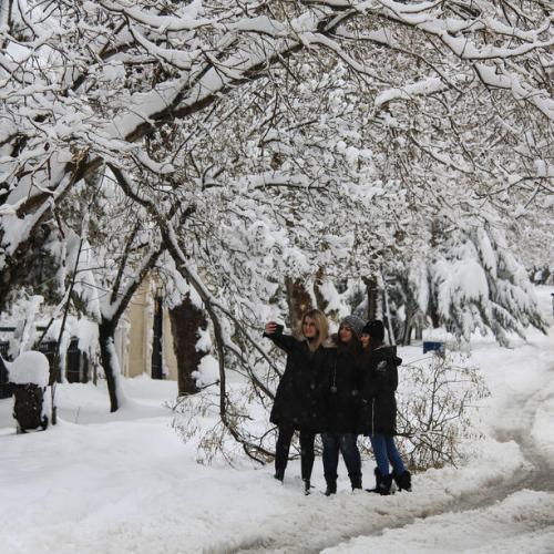 Photo Story: Snowstorm hits Lebanon