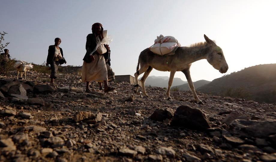 Photo Story: Yemenis use donkeys and camels to carry food supplies