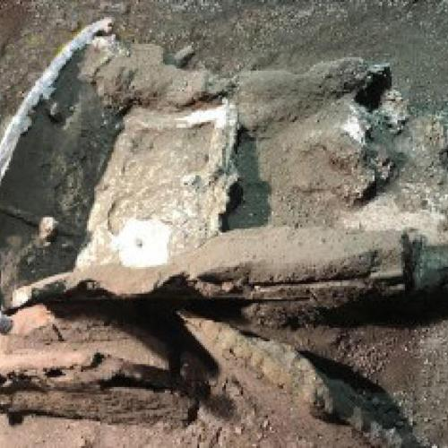 Unique chariot found in Pompeii