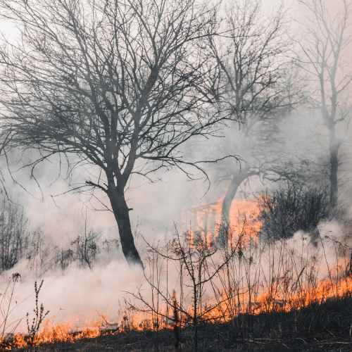 UPDATED: Three dead as wildfire in south Turkey rages on