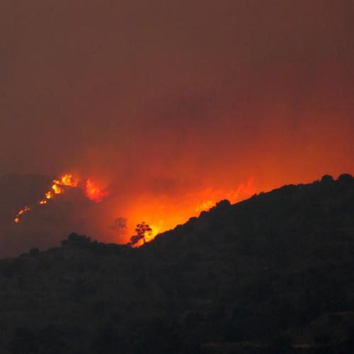 Cyprus seeks aid from EU and Israel as huge forest fire rages