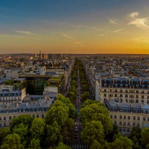 French consumer confidence holding up despite COVID curbs