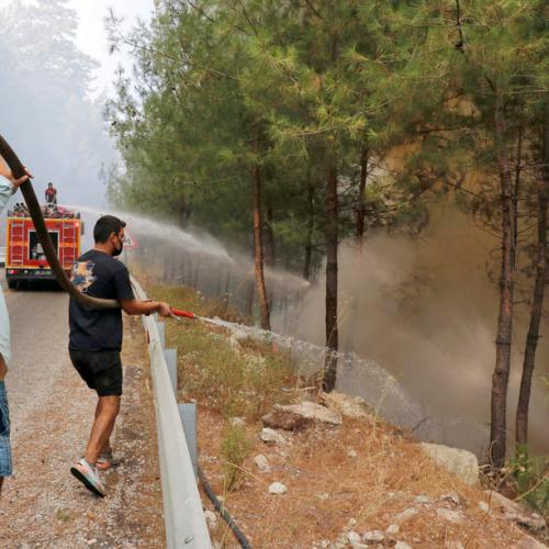 Wildfire rips through Algeria, killing 42 people including soldiers