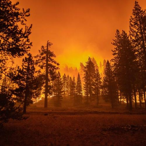 Wildfire menaces California's Lake Tahoe area after chasing away thousands
