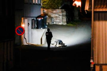 Deaths in Norway attack came from stab wounds, not bow and arrow, police say