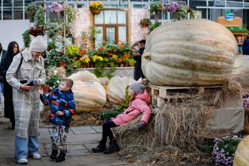 Photo Story: The largest pumpkins grown in Russia in 2021