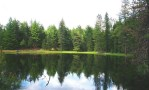 a small, glass-surfaced lake reflects conifer trees along a green shoreline