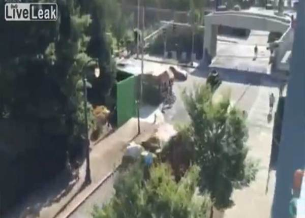 VIDEO: Shocking! Garbage Truck Takes Out Overpass