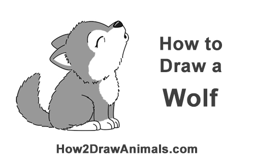 How To Draw A Wolf Howling Cartoon Video Step By Step Pictures