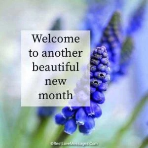 Happy New Month Messages for My Lover