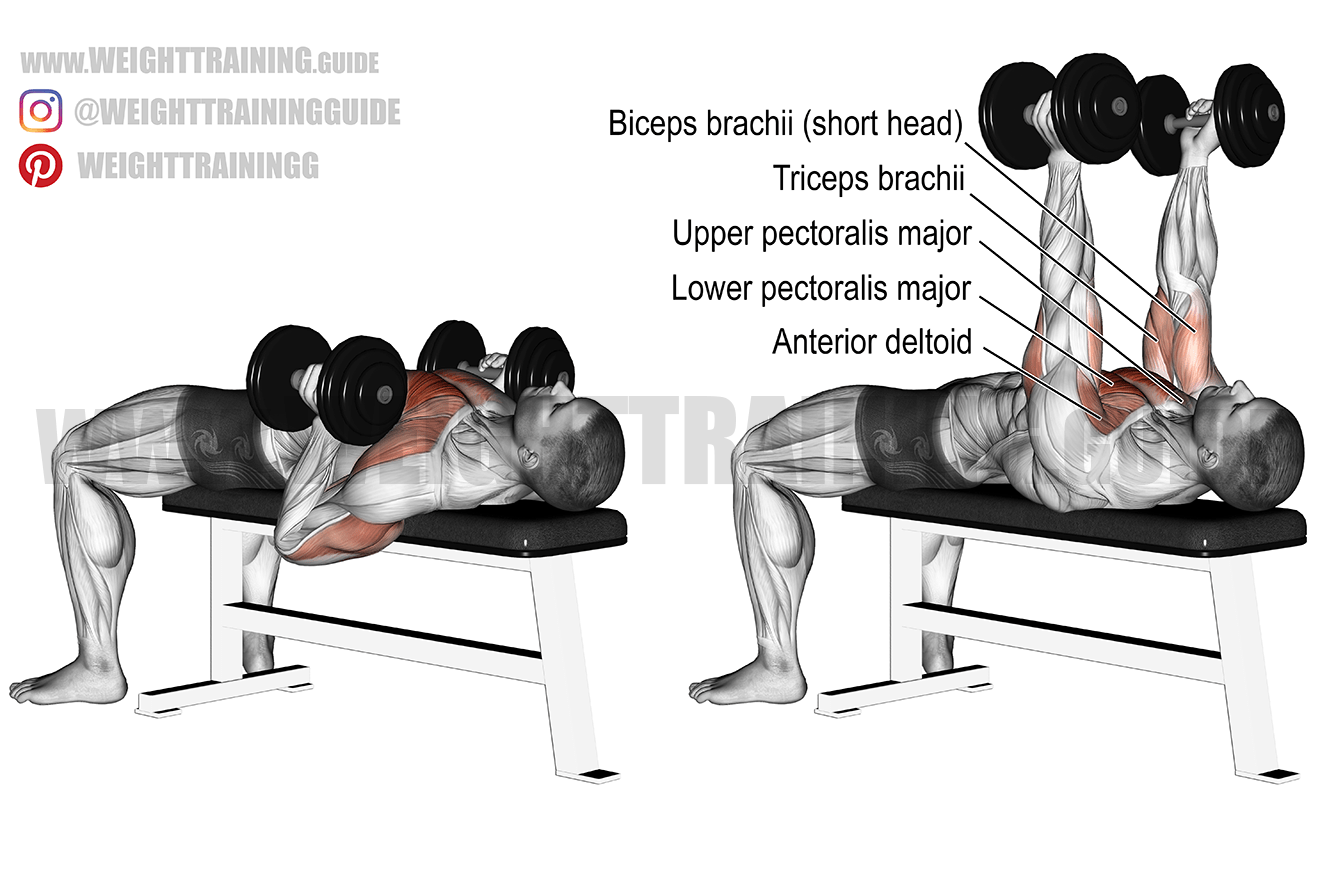 Hammer-grip dumbbell bench press exercise instructions and