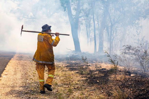 In this Nov. 2018, photo released on Wednesday, Nov. 28, 2018, by the Queensland Fire and Emergency Service, a firefighter inspects a fire ground at Deepwater, near Bundaberg, Australia. (QLD Fire and Emergency via AP)